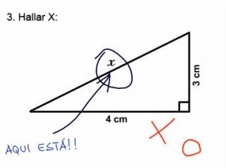 donde esta x ?